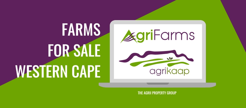 Farms for sale Western Cape