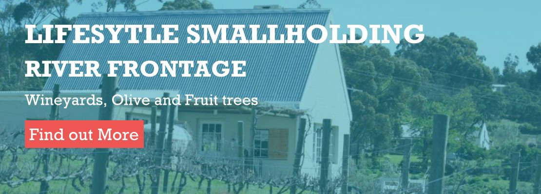 smallholding for sale AGF0380