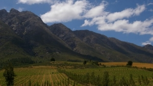 Tulbagh Farms