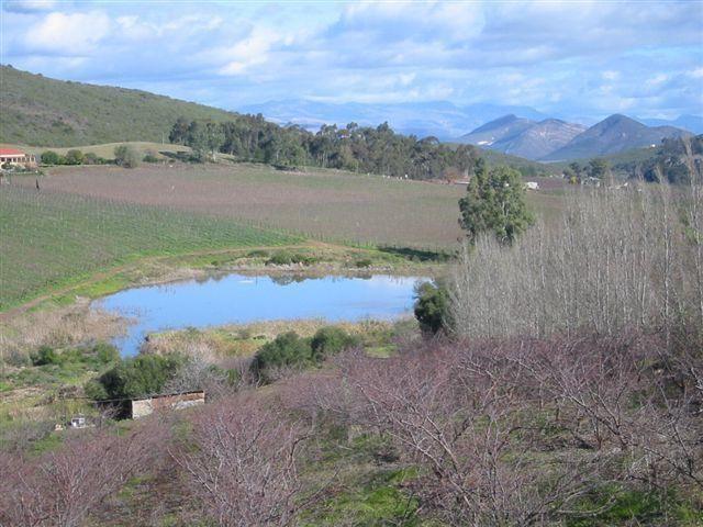 Agf0147 Lifestyle Irrigation Fruit Amp Wine Smallholding