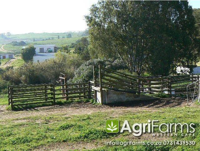 Agf0212 Lifestyle Wine Amp Livestock Farm Farms For