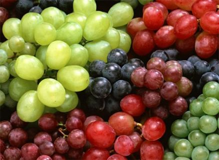 Table Grape, Fruit Farm | AGF0222