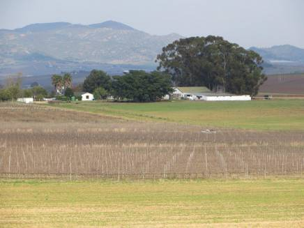 Wine, Livestock, Irrigation Farm | AGF0065