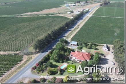 Wine Farm | AGF0192