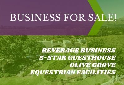 Olive Irrigation Lifestyle Guest Equestrian Smallholding | AGF0310