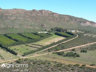 Fruit, Citrus, Guest, Game, Livestock, Rooibos Farm | AGF0252