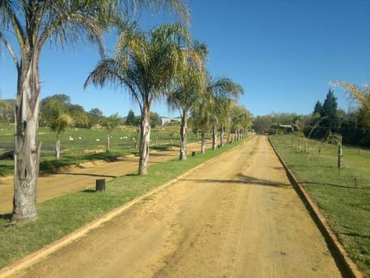 AGF0020 - Equestrian & Irrigation Smallholding