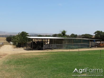 Lifestyle, Smallholding, Irrigation, Livestock, Vegetable & Pig Farm | AGF0288