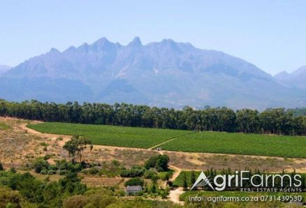 Wine Cellar, Lifestyle, Eco Tourism, Irrigation Farm | AGF0274