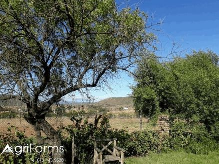 Lifestyle Irrigation Smallholding | AGF0339