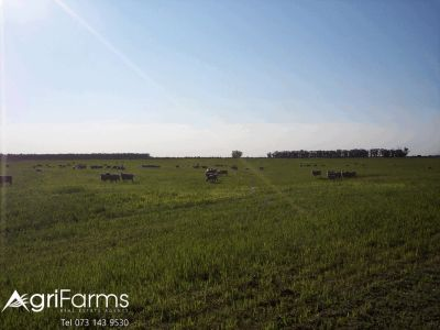 Wheat and Livestock Farm | AGF0345