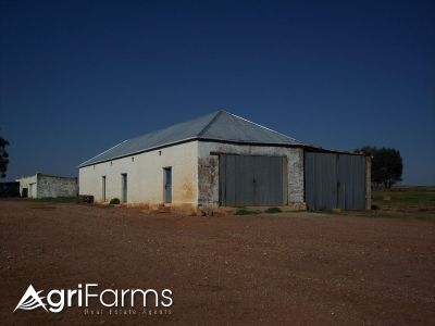 Wheat Livestock Farm | AGF0361