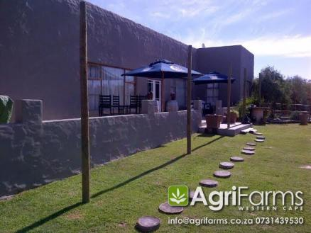 AGF0178 - Lifestyle & Equestrian Smallholding