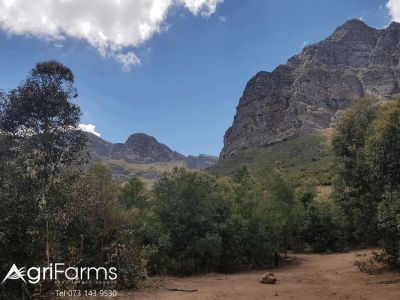 Lifestyle Eco Tourism Smallholding | AGF0327