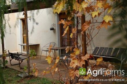Lifestyle, Irrigation & Olive Grove Smallholding | AGF0184