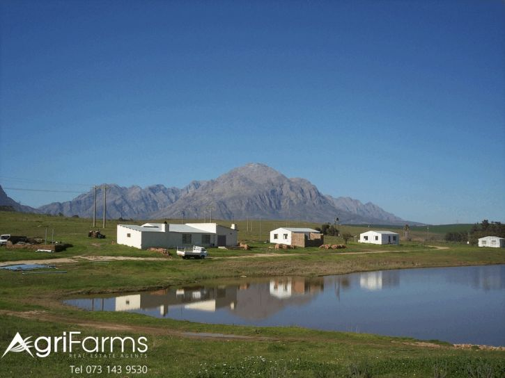 Lifestyle Irrigation Guest Smallholding | AGF0355