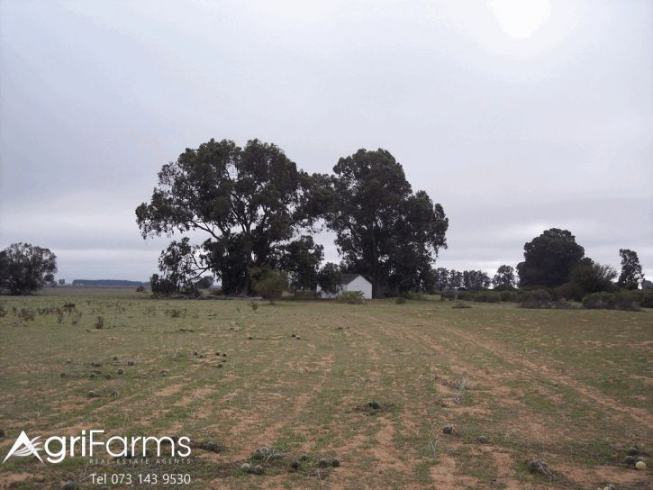 Wheat Livestock Farm | AGF0353