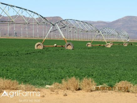 AGF0301 - Wheat, Livestock & Irrigation Farm