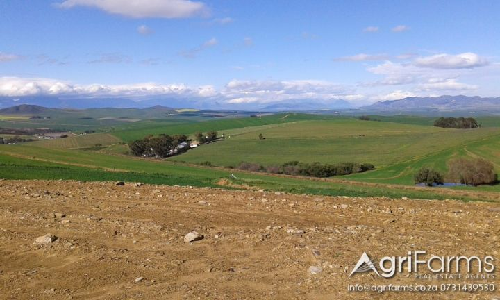 AGF0261 - Lifestyle, Wheat & Livestock Smallholding